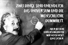 Albert Einstein Tafel Spruch 12 Blechschild Schild gewölbt Tin Sign 20 x 30 cm