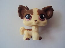 snoopette2008 - Chien Papillon Chihuahua dog # 385 LITTLEST PET SHOP (Petshop)
