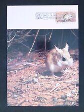AUSTRALIA MK 1992 FAUNA MAUS MÄUSE MOUSE MAXIMUM CARD MC CM d1717