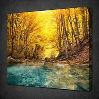 RIVER DEEP IN MOUNTAIN FOREST CANVAS WALL ART PICTURE PRINT READY TO HANG