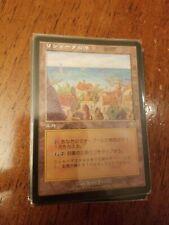 Forest 347 FOIL Mercadian Masques PLD-SP Basic Land MAGIC MTG CARD ABUGames