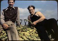 35mm Slide 1940s Men Corn Harvest Overalls Shovel Kodachrome Red Border Farming
