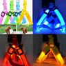 Best Dog Harness Cat Safety LED Flashing Light Leash Belt Collar Rope Vests B5U6