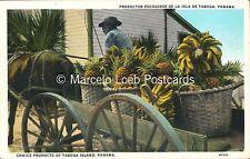 PANAMA PRODUCTOS ESCOGIDOS DE LA ISLA DE TABOGA 87533