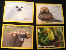 2 x National Geographic Kids (Fruit Bowl) Packs of Animal Stickers. SEALED