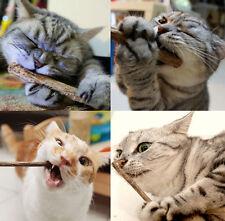 5pcs Cat Chew bâton Treat cataire Molar Toy Matatabi Natural