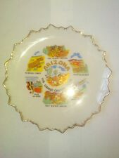 """Arizona Collector Plate ~ 8 1/4"""" Tip to Tip W/ Gold Sawtooth Edge ~ Collectible"""