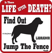 Labrador Life After Death Funny Warning Dog Sign