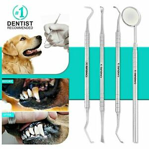 Dog Dental Tool Tooth Scraper Mirror Scale Dental Floss Calculus Plaque Remover