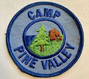 Vintage Girl Scout Patch 1970's Georgia Camp Pine Valley  GSA