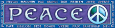 > PEACE on EARTH < Affirmation Bumper Sticker Decal Wiccan Pagan B02