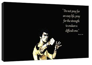 BRUCE LEE DO NOT PRAY FOR PICTURE PRINT ON FRAMED CANVAS WALL ART HOME DECOR