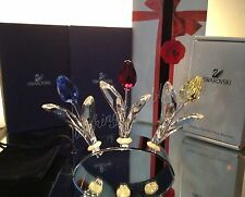Swarovski SCS Red, Yellow & Blue Tulips + Tulip Holder & Pouch! ALL NEW In BOX!!
