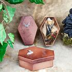 N27L (KP) Taxidermy Oddities Curiosities Real Bat Coffin Display collectible