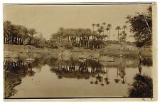 Egypt OASE PALM TREES MIRRORING / PALMEN OASE SPIEGELUNG * Vintage 10s Photo PC