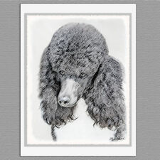 6 Standard Poodle Parti Black and White Dog Blank Art Note Greeting Cards