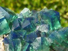 Fluorite Green Blue, Diana Maria Mine, Rogerley, England. 8 x 4 cm.