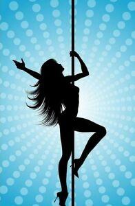 Dance Pole Full Kit Portable Stripper Exercise Fitness  PInk  (inv21113b)