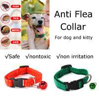 Anti Fleas Ticks Mosquitoes Collar Bell Dog Cat Puppy Month Effective