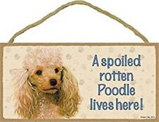 """A Spoiled Rotten Poodle lives here! Apricot Cute Dog Sign 5""""x10"""" Wood Plaque 120"""