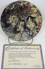 Our Woodland Friends Shy Explorers Bradford Exchange Plate #4
