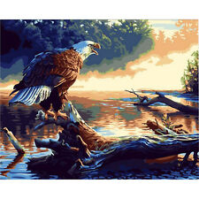 Paint By Number Kit Eagle Birds Draw DIY Picture Artwork 40x50cm 16x20in Canvas