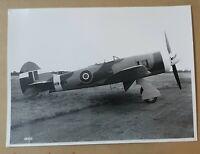 Vintage Photograph R.A.F. hawker tempest II MW404 rare 1945
