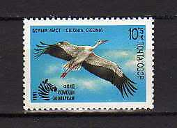 "15232) RUSSIA 1991 MNH** Nuovi** Bird ""Ciconia"" - Cicogna"