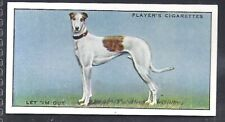 PLAYERS-FAMOUS IRISH GREYHOUNDS-#28- LET 'IM OUT