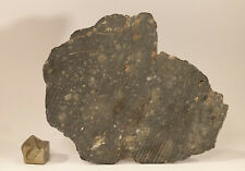 Neues AngebotVery nice meteorite slice NWA 12757 highly shocked EUC 16.6g
