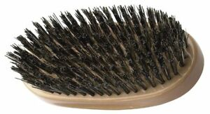 DIANE - REINFORCED BOAR BRISTLE EXTRA FIRM PALM BRUSH, BROWN, NEW