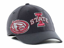 2e5ec31e352 Iowa State Cyclones Ball Cap Hat~GRAY~Cy the Cardinal~FlexFit~NCAA