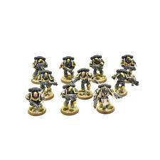 SPACE MARINES 10 tactical squad #3 PRO PAINTED Red Scorpions Army