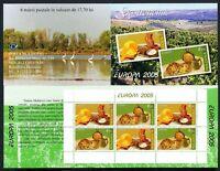 Moldawien Markenheftchen MiNr. MH 9 postfrisch MNH Cept 2005 (P299