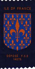 Boy Scout Badge ILE de FRANCE FSE Assn FRANCE