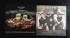 LIMP BIZKIT Promo Poster (chocolate starfish & the hot dog flavored water)MINT