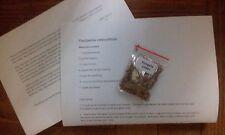 Paulownia elongata ( Fast Growing Tree) - 1500 Seeds + Gift