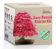 Grow your own Bonsai kit – Easily grow 4 types of Bonsai trees Starter Guide NEW