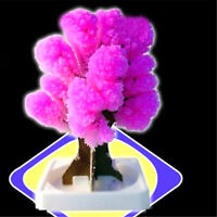 Magic Japanese Tree Christmas Magically Decorative Growing Paper Trees Toys NQZY