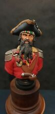 Pirate Bust - Professionally Painted 200mm Scale