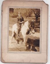 Antique Cabinet Card Photograph Adorable Little Boy Sitting on Cute Pony Horse