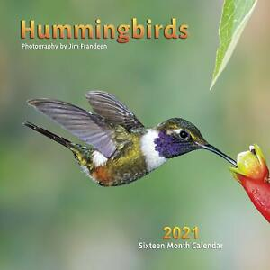 2021 Hummingbirds Wall Calendar by Apollo Publishers Full-Color Imagery