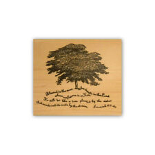 Scripture Tree mounted rubber stamp Christian bible verse Jeremiah 17:7-8 CMS #2