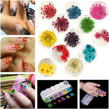 12 Colors Real Nail Dried Flowers Nail Art Decoration DIY Tips Dry Flowers Hot