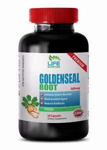 weight loss equipment for women - GOLDENSEAL ROOT 520MG 1B - goldenseal vegan