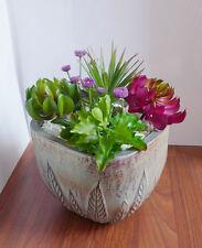 6 Mini Artificial Succulents Grass Fair Garden Decoration