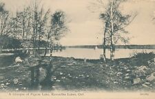 KAWARTHA LAKES ON – A Glimpse of Pigeon Lake