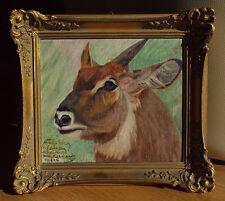 Wilhelm KUHNERT (1865-1926) Antilope 14.1.06