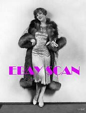 DOROTHY MACKAILL 8x10 Lab Photo '20s Fur Coat & Elegant Gown Silent Era Portrait