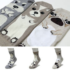 New 3 Pairs Cute Animal Women Big Kids girl Character Made In Korea Funny Socks